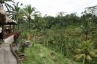 バリ島 6